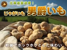 images273